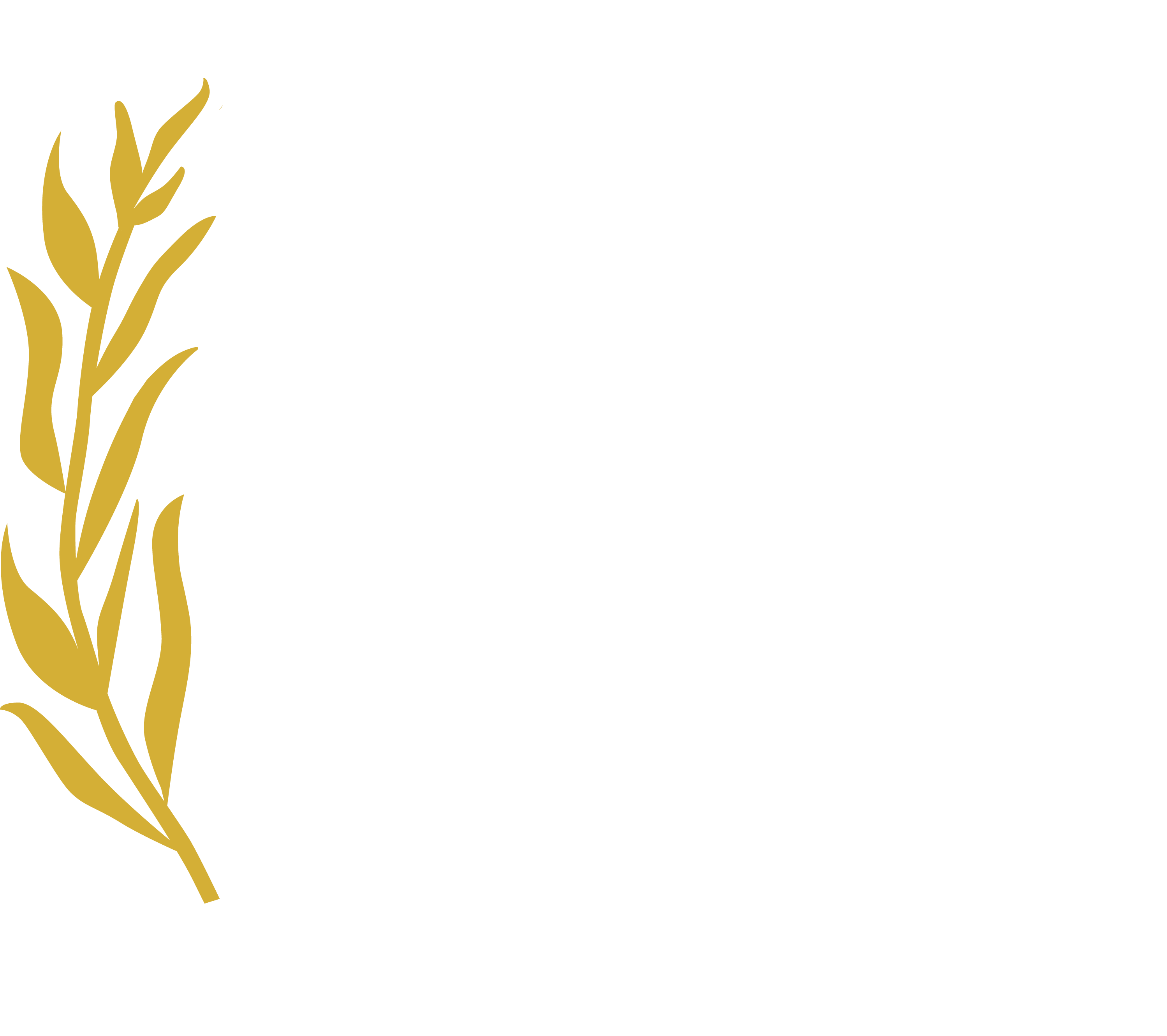 Beverly Hills Film Festival | Official Site